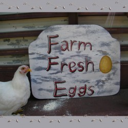 Farm Fresh Eggs Sign Original Primitive Folk Art Farmhouse Painting